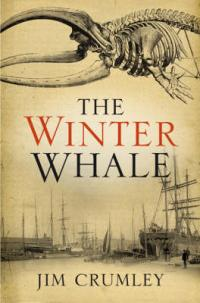 The Winter Whale Dundee Scotland
